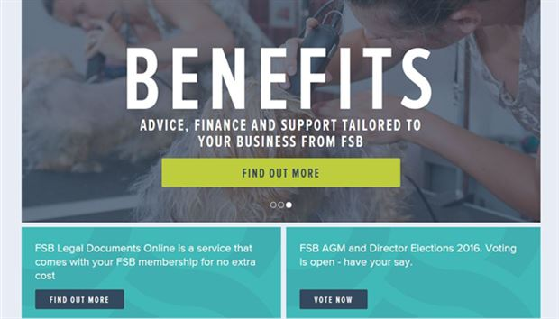 What is Foundations of Small Business (FSB) Connect?